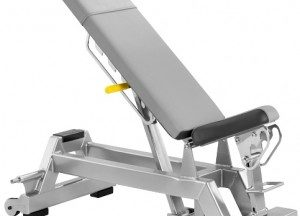 CYBEX Locking Dumbbell Bench & Adjustable Dumbbell Bench